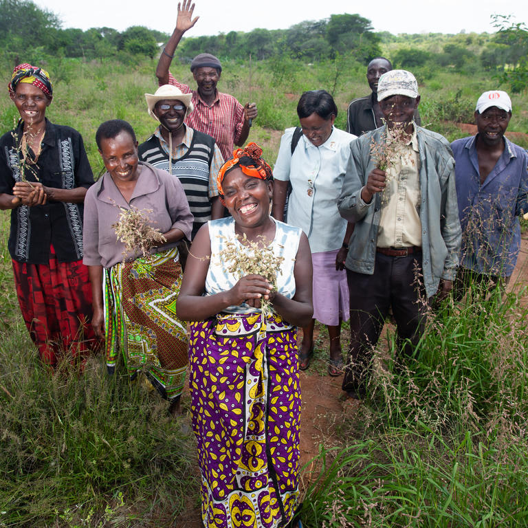 A group of people stand in a field with plants in their hands