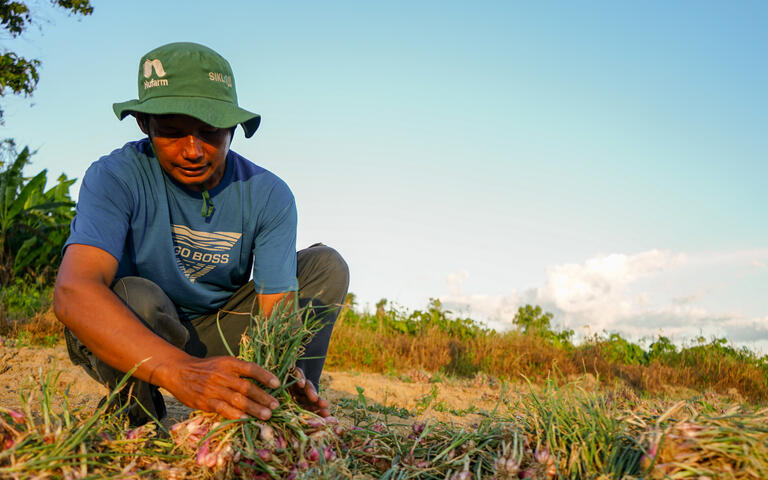 Central Sulawesi Earthquake Relief Farming Livelihoods