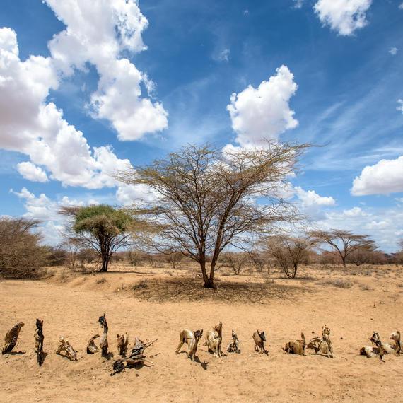 Turakana County Kenya drought
