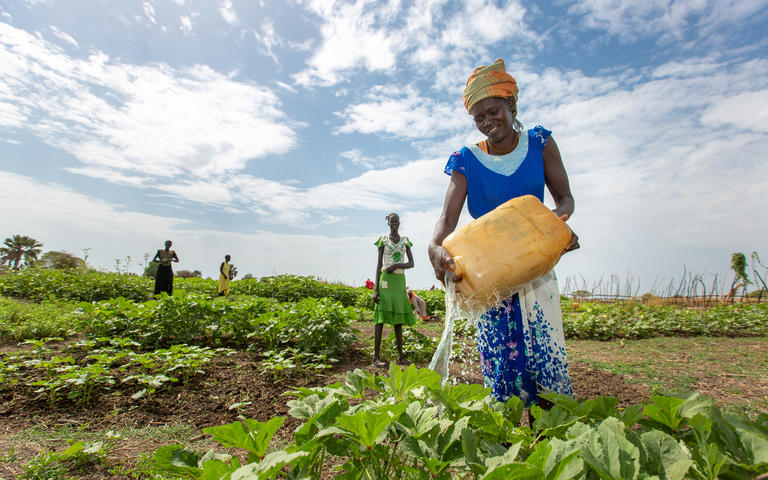 South Sudan womens vegetable garden using gifts donations