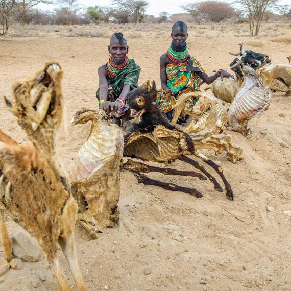 Animal carcasses line dusty Turkana roads